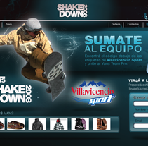 Home Site Shake Down. A Design, and Advertising project by Fernando Russo - 23-02-2011