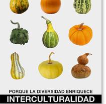 Campaña por la diversidad. Un proyecto de Diseño y Fotografía de Marta Sisón Barrero - 01-01-2009