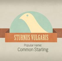 Starling. Un proyecto de Diseño, Ilustración y Motion Graphics de Nonoray - 01-12-2011