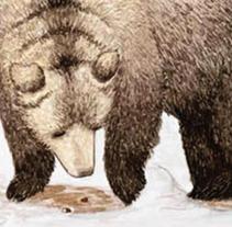 Invierno. Um projeto de Ilustração de Laura Regàs         - 19.01.2012
