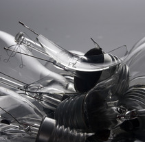 Bulbs. A Photograph project by David A. Rittel Tobía (Sechzehn)         - 13.05.2012
