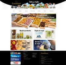Diseño web para empresa de setas y trufas.. Um projeto de Design, Ilustração, Publicidade, Desenvolvimento de software, Fotografia, Cinema, Vídeo e TV e UI / UX de Bloom Estudio         - 04.06.2012