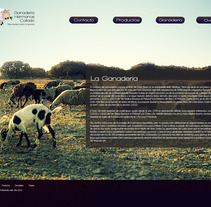 Web Personal de Sarabonillo. A Design project by Sara Bonillo         - 14.06.2012
