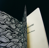 Novecento. A Design project by Victoria Haf         - 12.09.2012