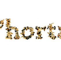 de L'horta. Un proyecto de Diseño de Alicia Raya - 19-04-2013