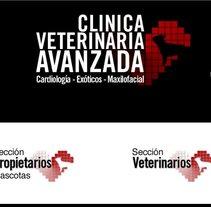 Clínica Veterinaria Avanzada. Un proyecto de Desarrollo de software de Daniel F. R. Gordillo         - 01.05.2013