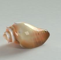Caracol. Um projeto de 3D de Yordany Ovalle Muñoz         - 09.03.2014