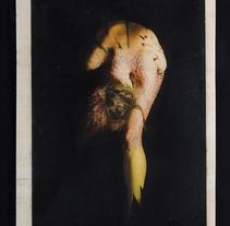 TRANSFERS VOL.I Nude/Nature. Um projeto de Fotografia de Cristina García Valencia         - 28.01.2014