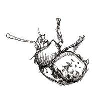 ILUSTRACIONES - editorial. A Illustration project by Enrique Puente         - 13.07.2014