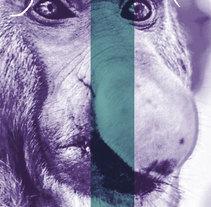 Cinco Sentidos. Un proyecto de Diseño gráfico de Gerardo Gujuli Apellaniz - 21-10-2014