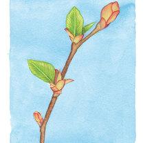 Página para TENMAG Marzo 2014. A Illustration project by Ajo Galván - Mar 01 2014 12:00 AM