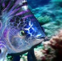 Fishes. Un proyecto de 3D de Meritxell Aznar Carmona         - 24.01.2016