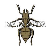 MARABUNTA, for Nomada Brewing. Un proyecto de Ilustración, Diseño gráfico y Packaging de Yeray Vega Fernandez de Labastida - 06-02-2016