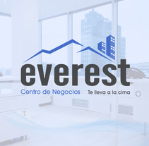 Logotipo Everest. A Design, Br, ing&Identit project by As Diseño Diseño Web Monterrey  - 03-05-2016