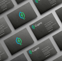 Cupra. Un proyecto de Ilustración, Motion Graphics, Br e ing e Identidad de Huaman Studio  - 22-05-2016