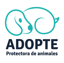 Adopte - Protectora de animales. A Illustration, Br, ing, Identit, and Graphic Design project by Andrea Teruel - 10-07-2016