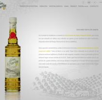Website Design. Un proyecto de UI / UX y Diseño Web de Noa Primo Rodríguez - 03-11-2016