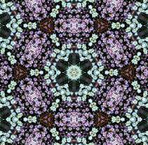 Kaleidoflowers. A Design, Photograph, Art Direction, Fine Art, Graphic Design, and Collage project by María Rogles - 15-11-2016