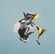 Lucha. Un proyecto de Diseño, Ilustración, Diseño editorial, Bellas Artes, Diseño gráfico y Collage de Juan Manuel Vera Samusenko - 29-12-2016