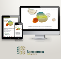 Barcelonesa Food Ingredients. A UI / UX, and Web Design project by Borja Cabeza Cabello - 05-03-2016