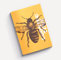 Dulca Honey. Un proyecto de Br, ing e Identidad, Diseño editorial, Diseño gráfico y Packaging de Alba Parera - 23-09-2017