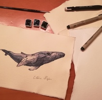 Whale ll. A Illustration project by Clara Pages         - 01.11.2017