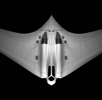 horten ho 229. A Design, and 3D project by Gorka Diestro Ortega         - 09.01.2018